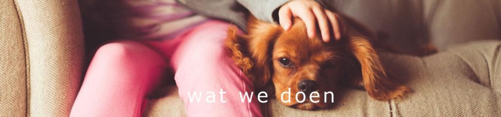 Wat wij doen